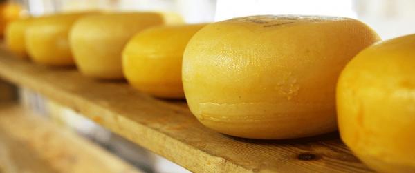 Lactosevrije kaas: welke kazen mag je wel?